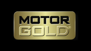 MOTOR GOLD – lubricants
